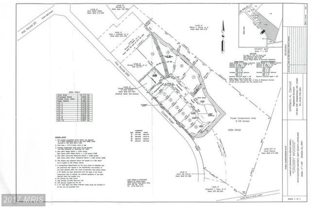 Centennial Lane, Rock Hall, MD 21661 (#KE8358613) :: LoCoMusings