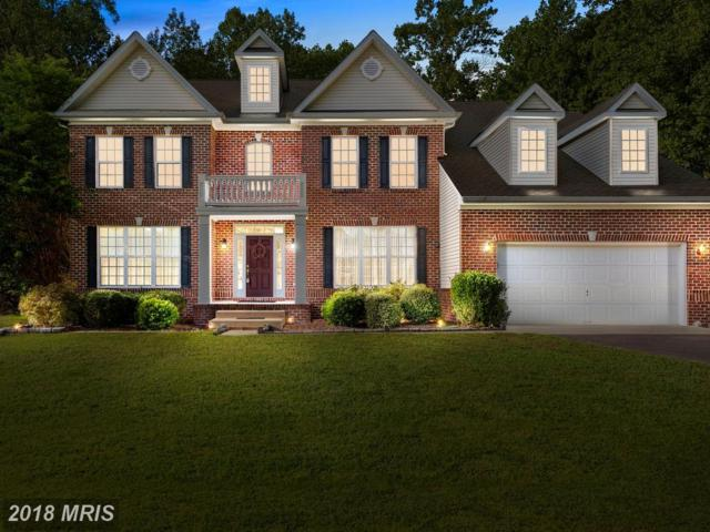 8445 Gray Fox Lane, King George, VA 22485 (#KG10213006) :: Colgan Real Estate