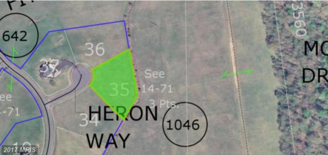 Heron Way Lot 35, King George, VA 22485 (#KG9600580) :: Pearson Smith Realty