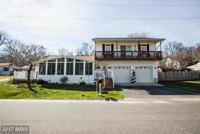 6084 Riverview Drive, King George, VA 22485 (#KG9884976) :: LoCoMusings