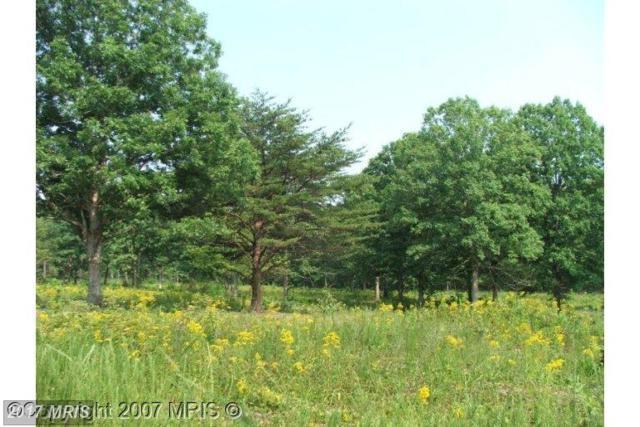 Kentucky Springs Rd, Mineral, VA 23117 (#LA7175364) :: LoCoMusings