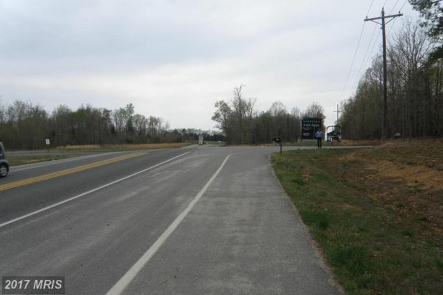25 Route 208, Mineral, VA 23117 (#LA8706126) :: Pearson Smith Realty