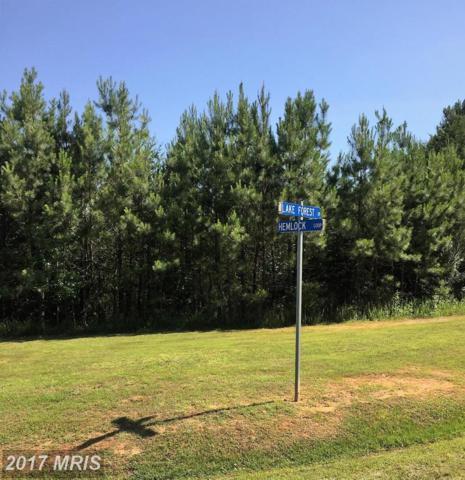 Lake Forest, Mineral, VA 23117 (#LA9974295) :: Pearson Smith Realty