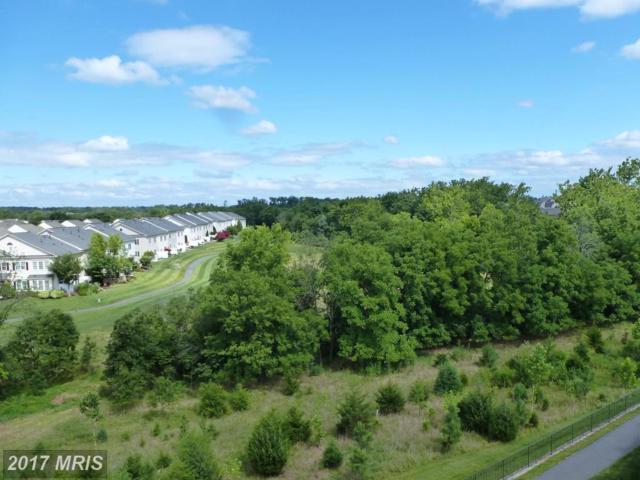 20580 Hope Spring Terrace #403, Ashburn, VA 20147 (#LO10002059) :: Pearson Smith Realty