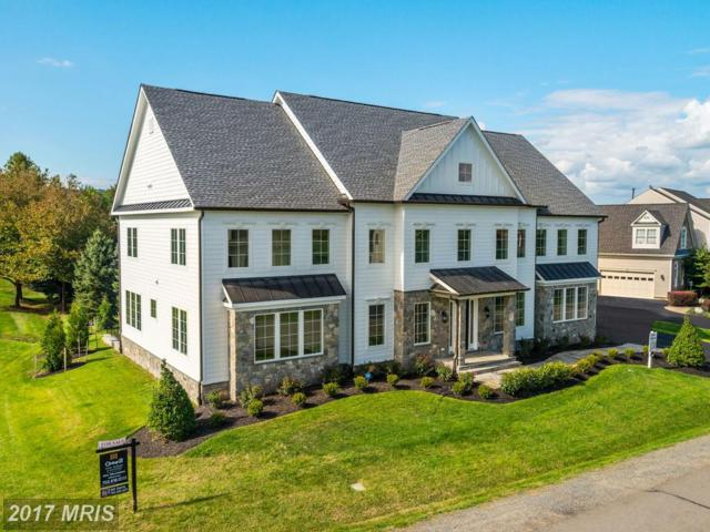 16605 Ferriers Court, Leesburg, VA 20176 (#LO10012871) :: Pearson Smith Realty