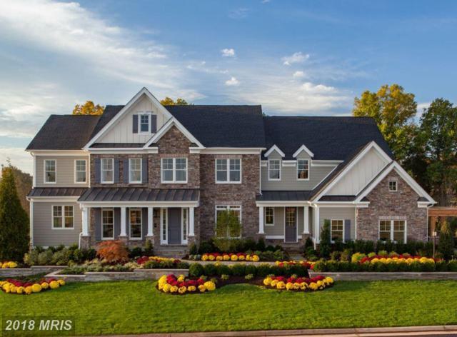 41288 Lavender Breeze Circle, Aldie, VA 20105 (#LO10069751) :: LoCoMusings