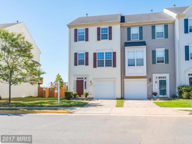 21067 Mossy Glen Terrace, Ashburn, VA 20147 (#LO10071392) :: Wicker Homes Group