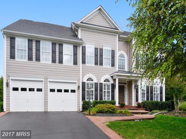42870 Glyndebourne Court, Broadlands, VA 20148 (#LO10081724) :: Wicker Homes Group