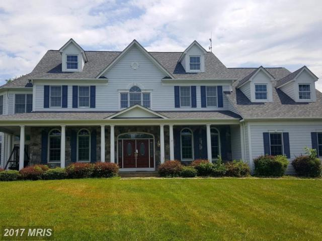 40918 Pacer Lane, Paeonian Springs, VA 20129 (#LO10081949) :: Pearson Smith Realty