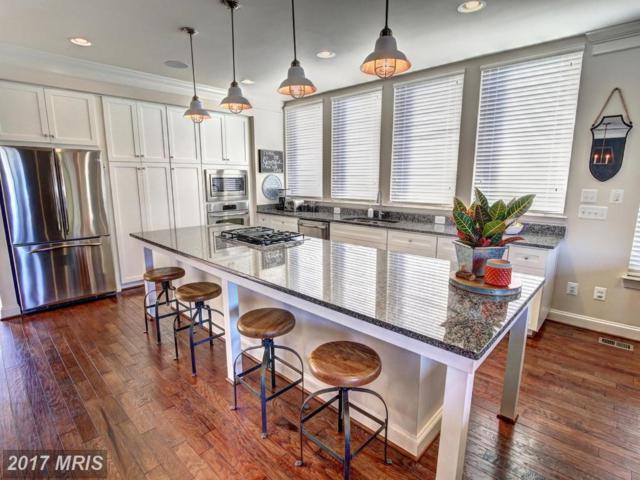 22810 Goldsborough Terrace, Ashburn, VA 20148 (#LO10084288) :: LoCoMusings