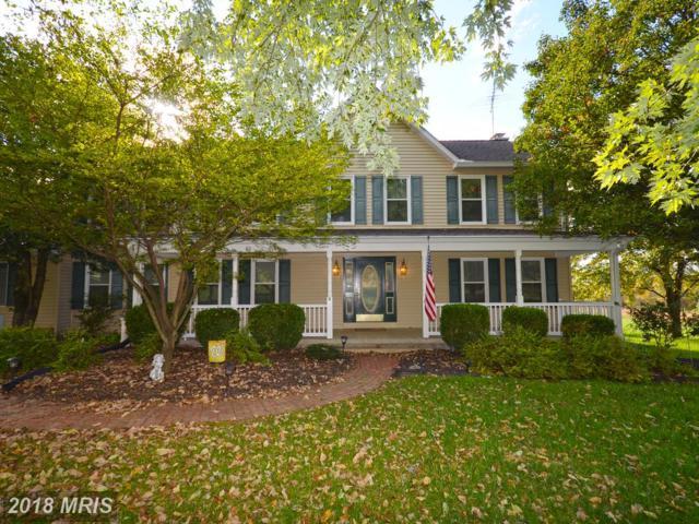 17563 Lakefield Road, Round Hill, VA 20141 (#LO10086978) :: LoCoMusings