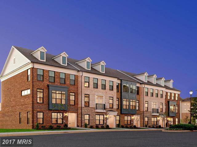 22559 Amendola Terrace, Ashburn, VA 20148 (#LO10089887) :: LoCoMusings