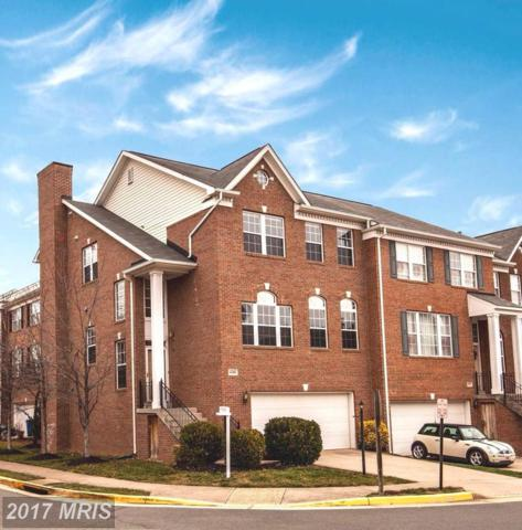 44268 Silkworth Terrace, Ashburn, VA 20147 (#LO10117651) :: The Belt Team