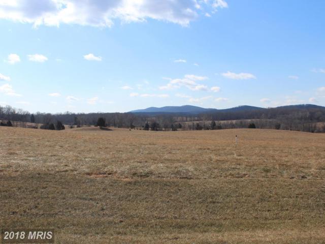 22847 Creighton Farms Drive, Leesburg, VA 20175 (#LO10118064) :: The Bob & Ronna Group
