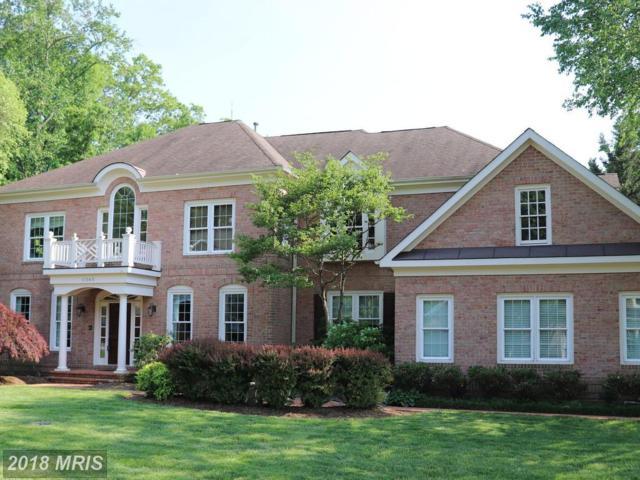 11363 Jackrabbit Court, Potomac Falls, VA 20165 (#LO10177693) :: Great Falls Great Homes
