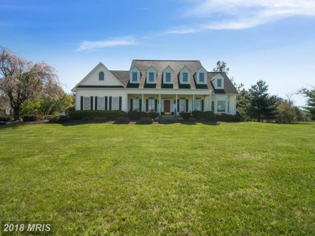 17140 Paloma Circle, Round Hill, VA 20141 (#LO10181845) :: LoCoMusings