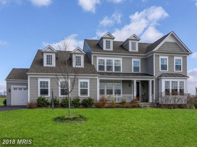 15652 Berkhamstead Place, Leesburg, VA 20176 (#LO10182064) :: The Maryland Group of Long & Foster