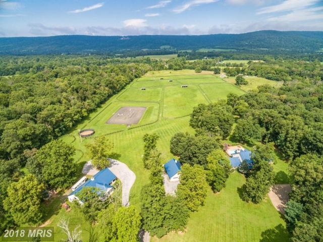 20022 Trappe Road, Bluemont, VA 20135 (#LO10195540) :: The Greg Wells Team