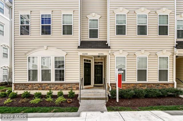 42286 San Juan Terrace, Aldie, VA 20105 (#LO10217795) :: Provident Real Estate