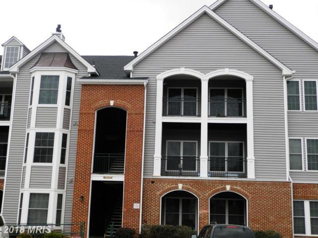 46590 Drysdale Terrace #301, Sterling, VA 20165 (#LO10222167) :: Bob Lucido Team of Keller Williams Integrity