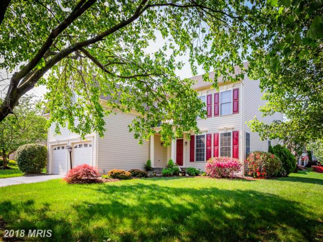 47627 Rhyolite Place, Sterling, VA 20165 (#LO10245861) :: Advance Realty Bel Air, Inc