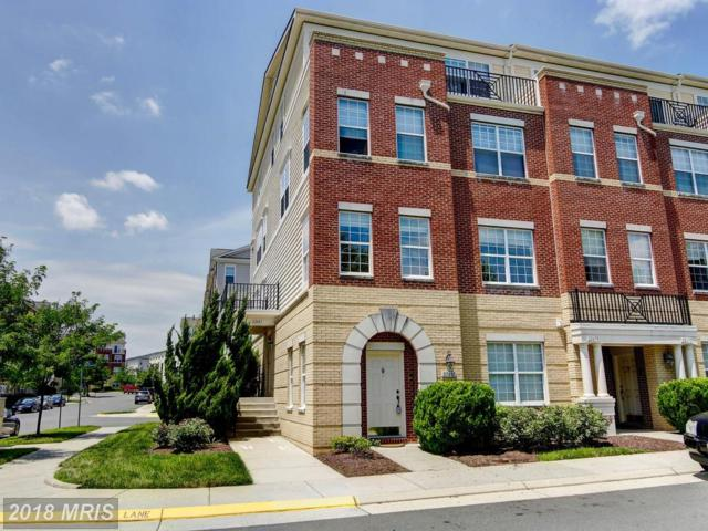 22681 Settlers Trail Terrace, Ashburn, VA 20148 (#LO10281905) :: Charis Realty Group