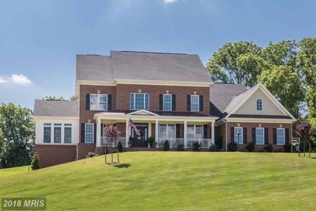 15921 Emerson Manor Court, Hamilton, VA 20158 (#LO10285828) :: Browning Homes Group