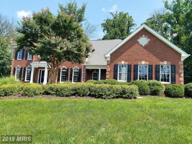41218 Cotter Court, Waterford, VA 20197 (#LO10305689) :: LoCoMusings