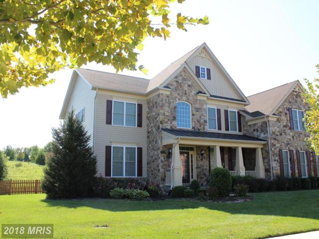 24332 Eagles Landing Place, Aldie, VA 20105 (#LO10330131) :: The Maryland Group of Long & Foster