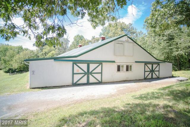 35485 Millville Road, Middleburg, VA 20117 (#LO8731170) :: LoCoMusings