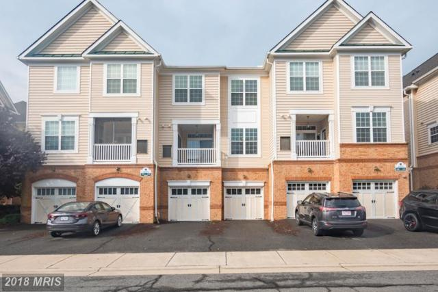 20375 Belmont Park Terrace #102, Ashburn, VA 20147 (#LO9010966) :: Circadian Realty Group