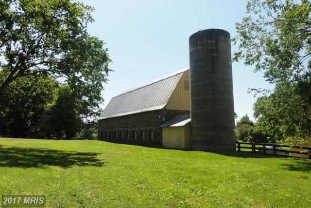 17864 Silcott Springs Road, Purcellville, VA 20132 (#LO9615549) :: LoCoMusings