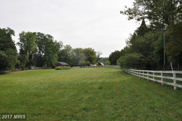 Simpson Circle, Paeonian Springs, VA 20129 (#LO9770457) :: LoCoMusings