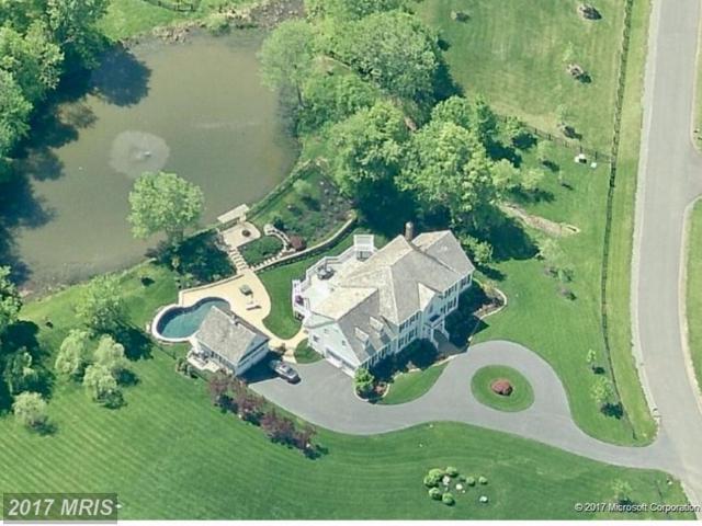24128 Grand Ellison Court, Aldie, VA 20105 (#LO9822502) :: LoCoMusings