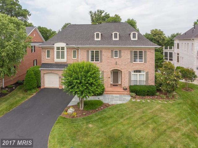 43410 Cloister Place, Leesburg, VA 20176 (#LO9867304) :: Pearson Smith Realty