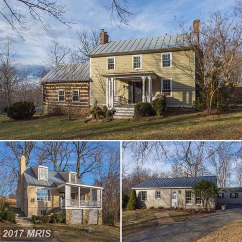 38085 Homestead Farm Lane, Middleburg, VA 20117 (#LO9871130) :: LoCoMusings