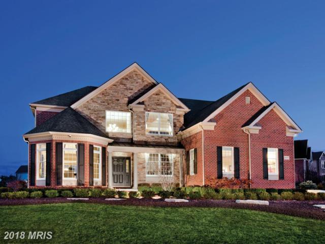 24335 Goshen Road, Aldie, VA 20105 (#LO9872221) :: LoCoMusings