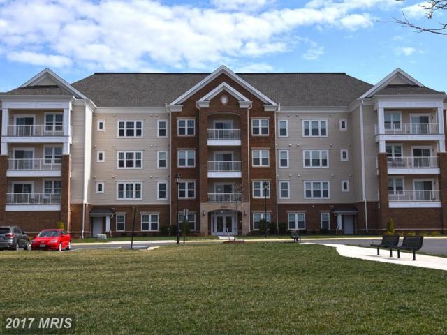 20610 Hope Spring Terrace #406, Ashburn, VA 20147 (#LO9890849) :: LoCoMusings