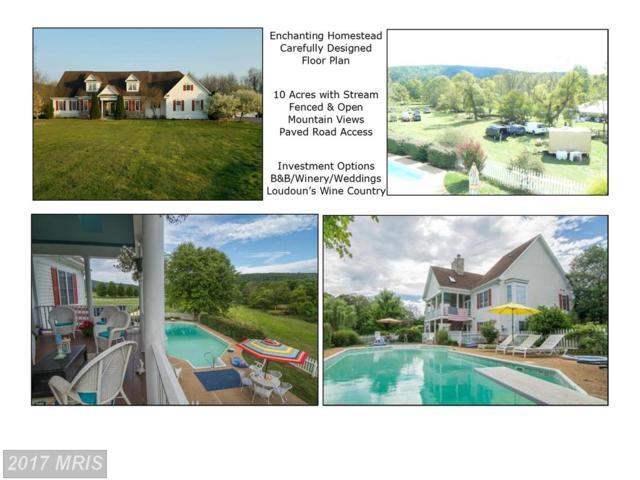 15215 Cider Mill Road, Purcellville, VA 20132 (#LO9894079) :: Pearson Smith Realty