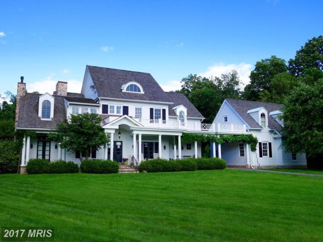 17050 Flint Farm Drive, Round Hill, VA 20141 (#LO9912427) :: LoCoMusings