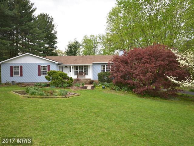 17705 Silcott Springs Road, Purcellville, VA 20132 (#LO9919704) :: Pearson Smith Realty