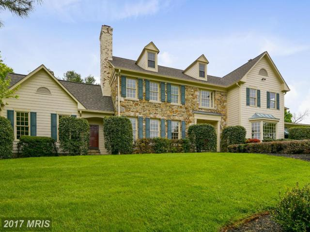 40544 Browns Lane, Waterford, VA 20197 (#LO9930659) :: Pearson Smith Realty
