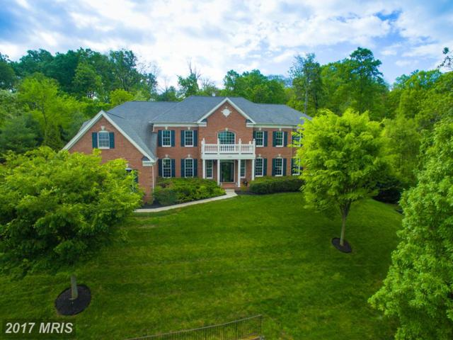 41296 Dutton Court, Waterford, VA 20197 (#LO9934590) :: Pearson Smith Realty