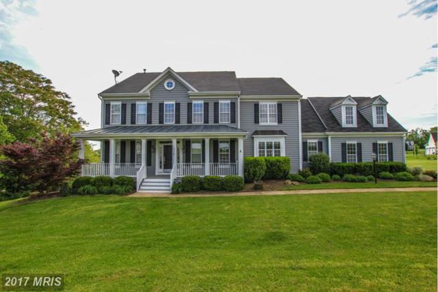 37181 Spruce Knoll Court, Purcellville, VA 20132 (#LO9941402) :: LoCoMusings