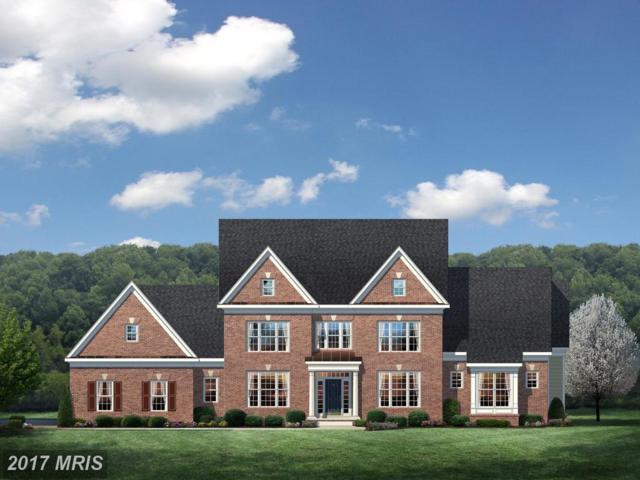 Waterford Meadow Place, Hamilton, VA 20158 (#LO9955462) :: LoCoMusings