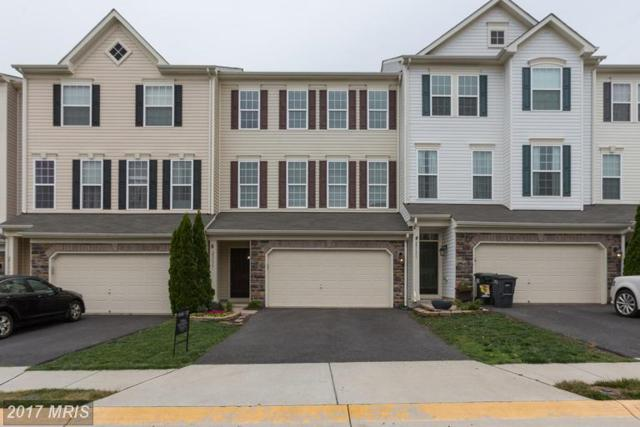 25173 Hummocky Terrace, Aldie, VA 20105 (#LO9956869) :: LoCoMusings