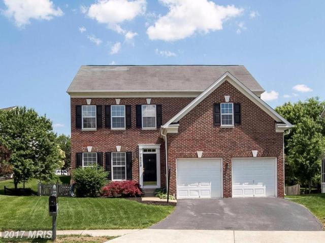 18248 Oak Lake Court, Leesburg, VA 20176 (#LO9956950) :: Pearson Smith Realty