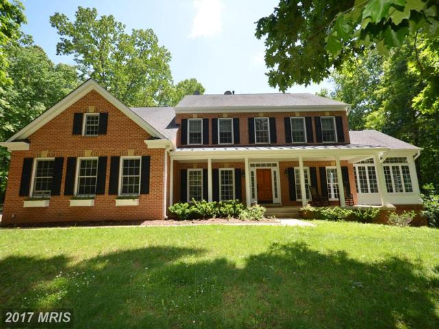 20137 Creekspring Court, Purcellville, VA 20132 (#LO9960275) :: LoCoMusings