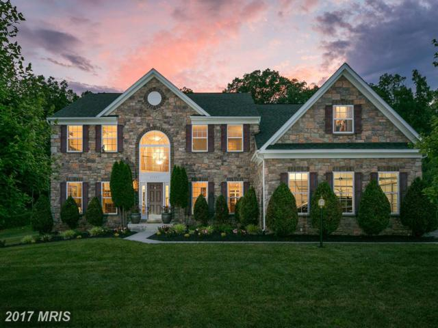 22587 Forest View Court, Ashburn, VA 20148 (#LO9985303) :: Pearson Smith Realty