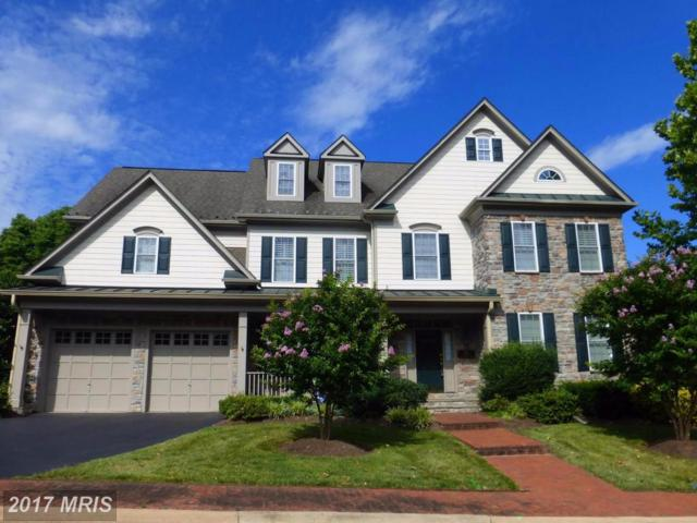 105 Old English Court SW, Leesburg, VA 20175 (#LO9988838) :: Pearson Smith Realty